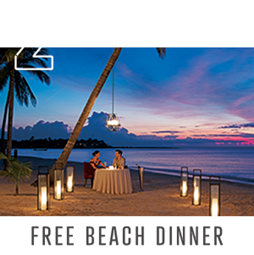Free beach dinner of couple on beach